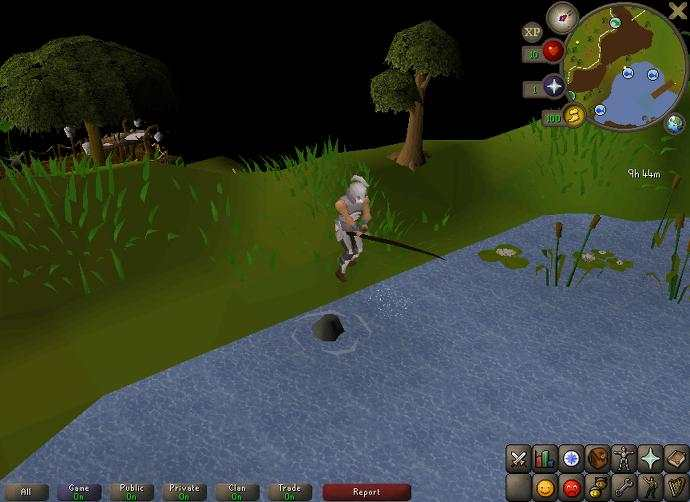 The Runescapelifers